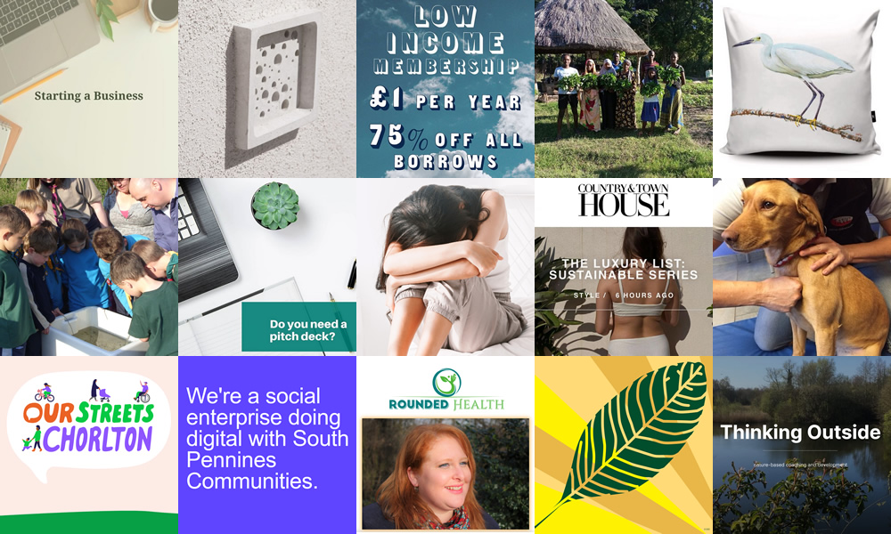 A montage of product and branding images of the clients listed in this article