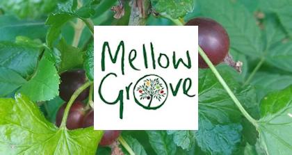 Mellow Grove