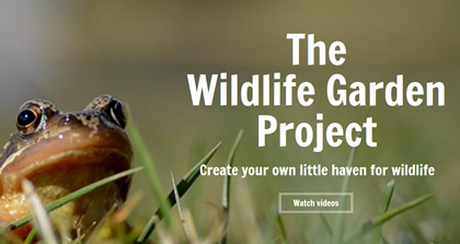 The Wildlife Garden Project